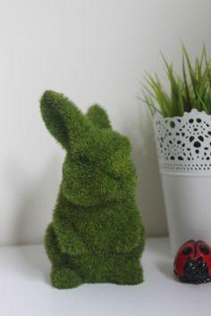 #artificial #grass #bunny