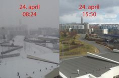 niknak79:  Then suddenly-SPRING! (in Iceland)