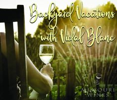 Vidal Blanc Month in Missouri | MO Wine Summer Garden, Summer Fun, Missouri Mo, Wine Education, Growing Grapes, Sparkling Wine, Wine Country, Wine Tasting, Wine Recipes