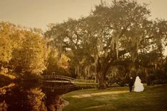 My favorite wedding pic. Us at Middleton Place, Charleston, SC. Wedding Vendors, Wedding Blog, Middleton Place, Picture Poses, Wedding Pictures, Real Weddings, Backdrops