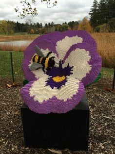 Morton Arboretum Lisle, Illinois  Bees!
