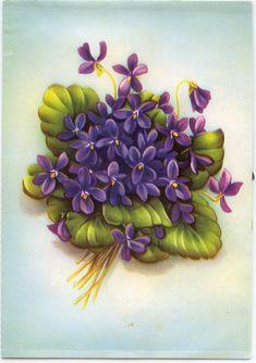 Sweet Violets Card