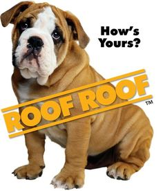 roof, roof!