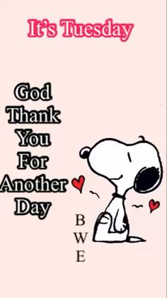 Tuesday Quotes Good Morning, Good Morning Snoopy, Happy Tuesday Quotes, Good Morning Inspirational Quotes, Morning Greetings Quotes, Good Morning Messages, Weekend Quotes, Morning Coffee, Peanuts Quotes