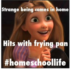 Suddenly life makes sense. Rapunzel is a homeschooler! I knew I liked her for a reason xD