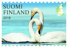 Postage Stamps, Finland, Nostalgia, Bird, Animals, Paper, Beautiful, History, Animaux