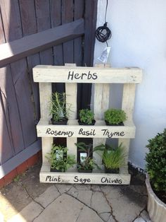 """Herb garden - I like a similar look but a bit more """"put together"""""""