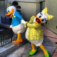 New Daisy Duck Mascot Costume Sale Free shipping and Fast Shipping - //.mascotshows.com/category/donald-duck.html & New Daisy Duck Mascot Costume Sale Free shipping and Fast Shipping ...