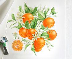 Watercolor fruits & berries on Behance Watercolor Fruit, Watercolour Painting, Watercolours, Fruit Illustration, Botanical Illustration, Jam Packaging, Greeting Card Storage, Botanical Prints, Cartoon Drawings