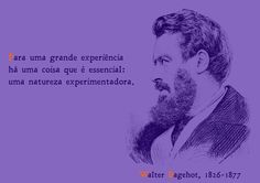 File:To a great experience one thing is essential - an experiencing nature. Walter Bagehot, 1826-1877 - pt.svg