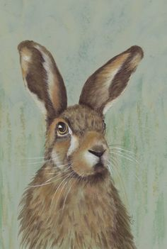 Soleful Hare  Blank Greeting Card by DiSingletonDesigns on Etsy,