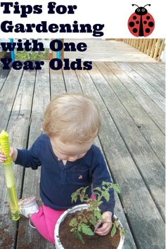 one day at a time: Tips for Gardening with a One Year Old