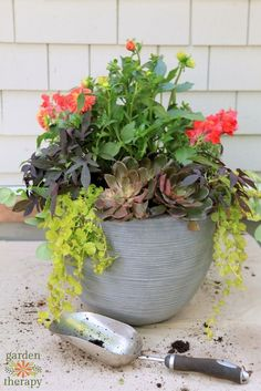 Start a container garden on your patio or deck in just three simple steps.Create a perfect planter arrangement with the right plants, soil recipe, and container choices. #LoveLowes #Sponsored