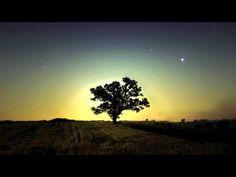 ▶ Phaeleh - Should Be True - YouTube