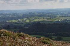 #Dartmoor #nofilter