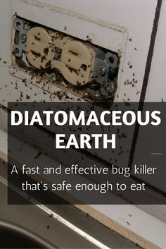 Diatomaceous earth - a bug killer that is safe, earth-friendly and effective. It's almost too good to be true (but it's not!)
