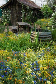 Rain Barrel, Picnic Table & Flowers