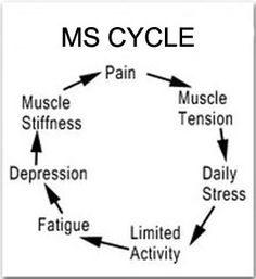 MS Cycle