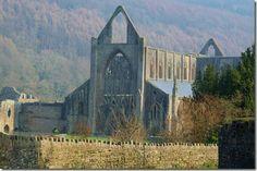 #Tintern Abbey