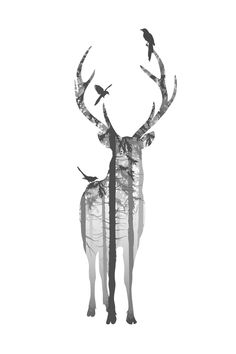 Posters and prints with Scandinavian art in black and white. Beautiful deer print for Nordic and Scandinavian interior design. Framed art with nature photo. Hirsch Wallpaper, Deer Wallpaper, Forest Silhouette, Deer Silhouette, Hirsch Silhouette, Hirsch Tattoo, Deer Wall Art, Wall Mural, Moose Art