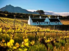Aaldering Vineyards & Wines - Aaldering Vineyards & Wines is set amid the idyllic vineyards in Devon Valley, in Stellenbosch.  We offer three beautiful Cape Dutch style lodges with thatched roofs, overlooking the vineyards.  The lodges ... #weekendgetaways #stellenbosch #southafrica