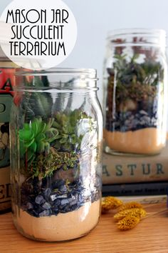 Terrarium in a mason jar - a fun gift idea that is easy to make! Perfect for succulents!