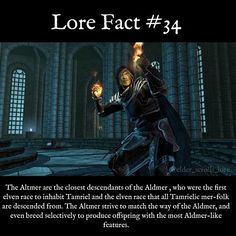 Please read carefully, because there is a difference between ALDmer and ALTmer; they are not the same term in this lore fact.