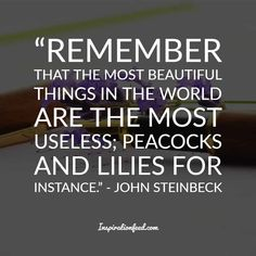 30 John Steinbeck Quotes To Give You a New Perspective On Life Literature Quotes, Author Quotes, John Steinbeck Quotes, Mark Twain Quotes, Zen Quotes, Perspective On Life, American, Quote Of The Day, Quotations
