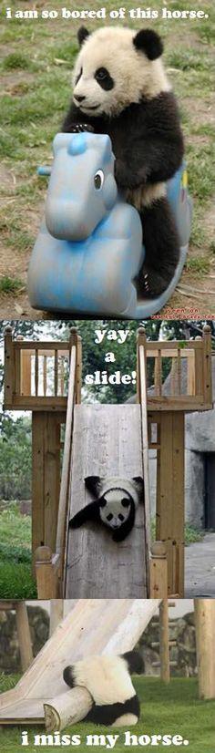 Silly Panda (meme I made)
