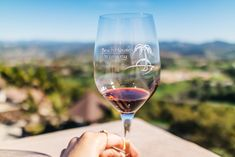 Last year I visited Ramona Valley, CAand had an amazing time, so I was  thrilled to visit another family owned winery, Beach House Winery. One of  the main reasons I love visiting boutique wineries is the laid back vibe,  friendly service,and the intimate experience.