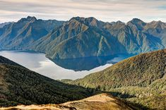 Lake Te Anau seen from the Kepler Track in Fiordland National Park, New Zealand.