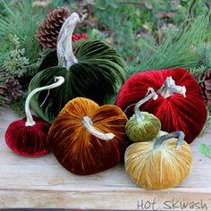 New Holiday Collection Shop Online - Velvet Pumpkins by Hot Skwash