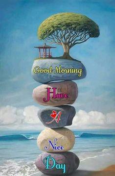 Latest Good Morning, Good Morning Funny, Good Morning Picture, Good Night Image, Good Morning Greetings, Good Morning Good Night, Good Morning Wishes, Rainy Day Images, Good Morning Nature Images