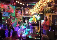 Bass, Gibson guitars, Singer, Souljam, vocals, guitar, Luna guitars, Luna, kilted mermaid, Vero beach, Florida, tele, telecaster, fender, line 6 amp, fender amps, swr, jam in the van, Phish, Grateful Dead, pub, bar, decorations, craft beer, Grateful Dead, tedeschi trucks,