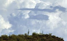 Westward Look Resort in Tucson, AZ | Tucson awaits monsoon after third-hottest June