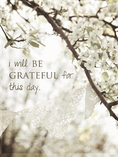 I will be grateful for this day; God, for life itself, air to breathe, my health, my family, food...
