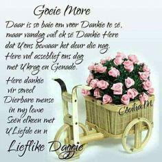 Good Morning Prayer, Morning Prayers, Good Morning Good Night, Good Morning Wishes, Good Morning Quotes, Evening Greetings, Meet U, Goeie More, Love Rose