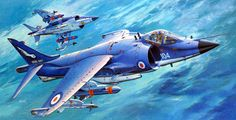 BAe Sea Harrier FRS Mk 1 (Shigeo Koike) Airplane Drawing, Airplane Art, Air Fighter, Fighter Jets, Blackburn Buccaneer, Aircraft Painting, Nose Art, Fighter Aircraft, Aviation Art
