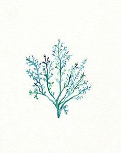 No.1 Sea Fern/ watercolor print / teal / light green / aqua / sea / ocean life /