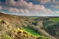 Speke's Valley Hartland Peninsula North Devon, Rare Plants, Wild Flowers, Golf Courses, Waterfall, Wildlife, Environment, Country Roads, Beach