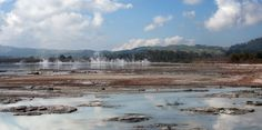 The bubbling milky waters at Sulphur Point are great for children on a family amble in Rotorua.
