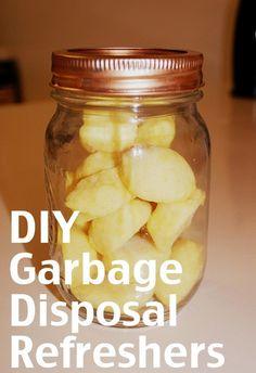 DIY Garbage Disposal Cleaners