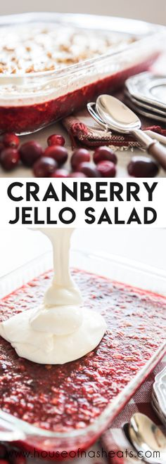 Cranberry Jello Salad is a sweet-tart dessert salad loaded with crushed pineapple, chopped pecans, cranberries and a tangy cream cheese topping! Its perfect to serve for Thanksgiving dinner, Christmas dinner, or any night of the year! Cranberry Salad Recipes, Cranberry Cheese, Fruit Salad Recipes, Jello Salads, Fruit Salads, Cranberry Dessert, Cranberry Relish, Cranberry Salad With Jello, Fruit Jello