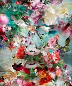 L& pour Cythère Nº 12 von Isabel. L& pour Cythère Nº 12 von Isabelle Menin. Art Floral, Photo D Art, Botanical Art, Flower Art, Flower Collage, Collage Art, Fine Art Photography, Online Art, Cool Art