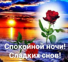 ...Загадай желание на счастье... Good Night, Wish, My Love, Memes, Flowers, Movie Posters, Photo Galleries, Have A Good Night, Nighty Night