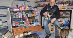 man opens his shop to cats during severs snowstorm