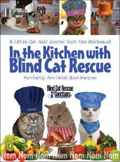 Help raise money for the Blind Cat Rescue❣ Buy their Cookbook❣