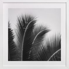 Afternoon Calm by Jessica Cardelucci at minted.com