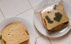 Anti-Theft Lunch Bags are zipper bags that have green splotches printed on both sides, making your freshly prepared lunch look spoiled. Don't let a sticky-fingered coworker or schoolyard bully get away with lunch theft again! - Could prob do this with a felt tip on the outside of a normal sandwich bag