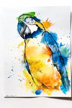 Watercolor Macaw - Original 9x12 Fine Art Painting of Parrot in Multicolor in Splash Art Mixed Media - Acrylic Pen and Ink & Water Color
